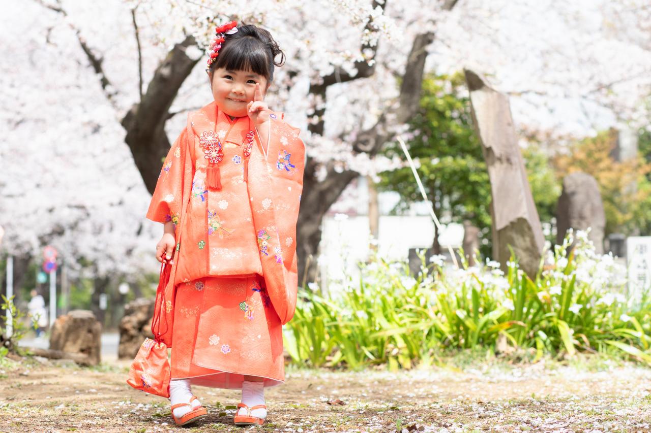 桜と一緒に。3歳七五三出張撮影。