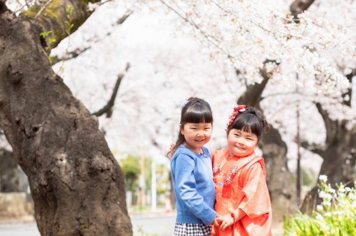 大好きなお姉ちゃんと。桜の下で3歳七五三出張撮影。