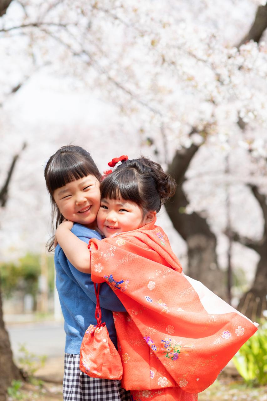 お姉ちゃんと一緒に。三歳七五三出張撮影。桜もきれい。