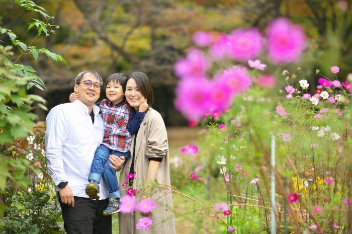 代々木公園家族写真撮影,4歳男の子誕生日記念撮影,コスモス畑