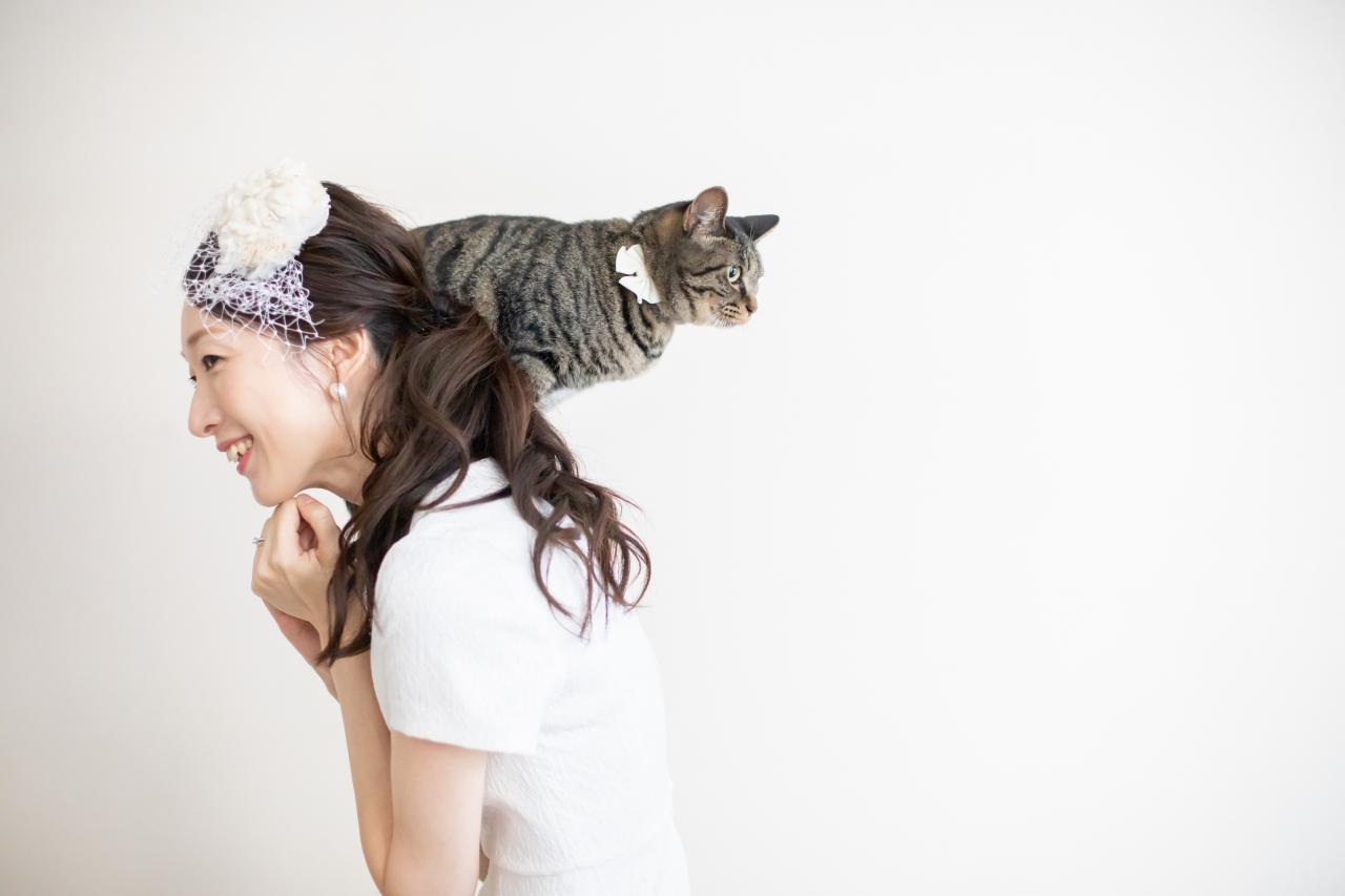 猫ちゃんと前撮り撮影,カジュアルウエディング,カジュアルなウエディングフォト