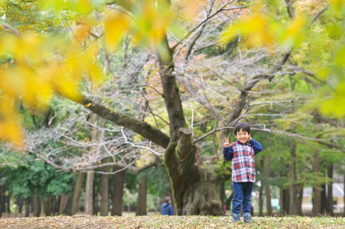 代々木公園家族写真撮影,4歳男の子誕生日記念撮影,紅葉と