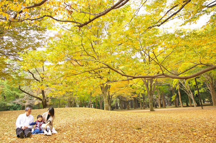 代々木公園ロケ撮影