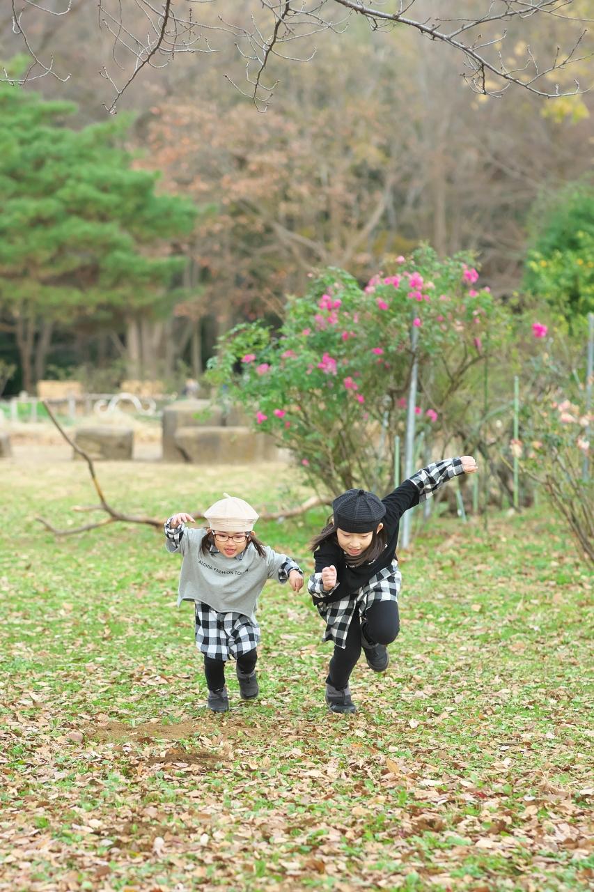秋の家族写真,ロケーションフォト,ロケフォト,よーいどん