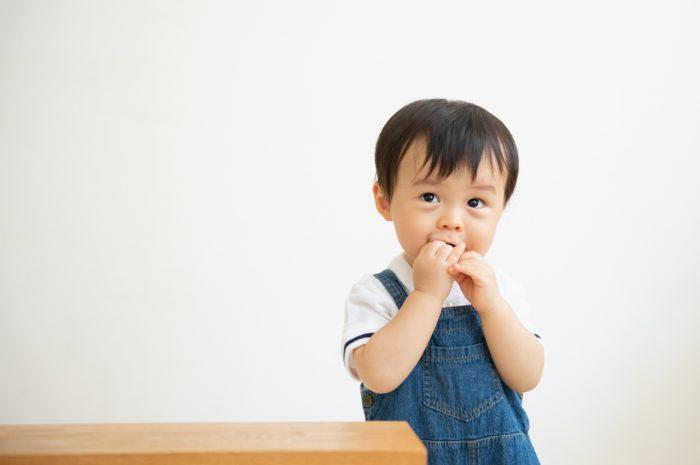 1歳男の子,マタニティフォト